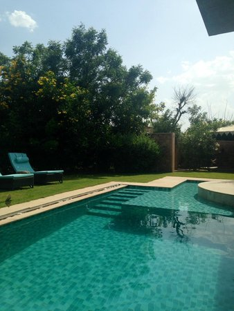 Tree of Life Resort & Spa Jaipur : They provide poolside chairs for couples too and a table and chairs to eat too