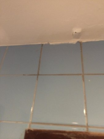 Hikka Tranz by Cinnamon: Moldy tiles in bathroom