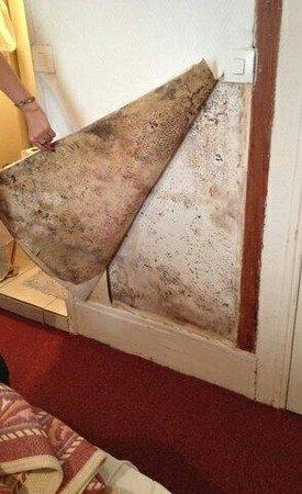 Hipotel Sacre Coeur Olympiades : humidité dans le mur entre la douche et la chambre. Tapisserie qui tombe et moisi.