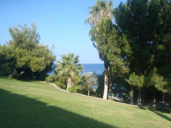 Pine Bay Holiday Resort: garden