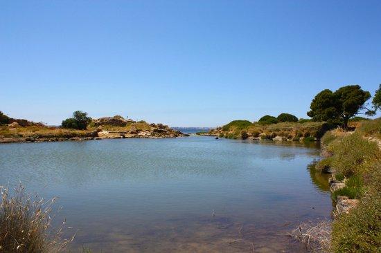 Isola di Mozia (Mothia)/ San Pantaleo : Le acque immobili del Kothon