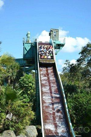 Busch Gardens: Mojón de agua (usar pilotin)