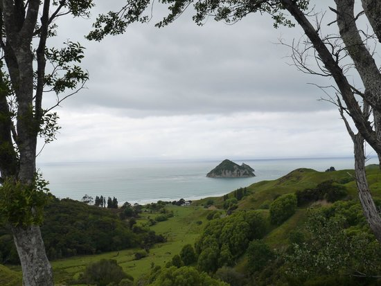 View from road into Anaura Bay