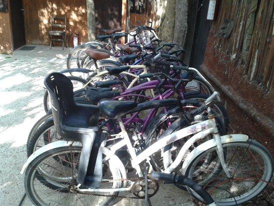 Hotel and Hostal El Punto : Bicicletas