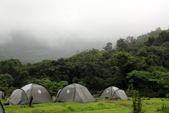 Rajmachi, India: Tents
