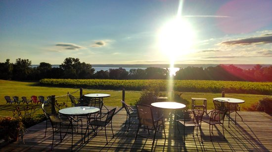 Buttonwood Grove Winery Cabins: View of Cayuga Lake from our grounds