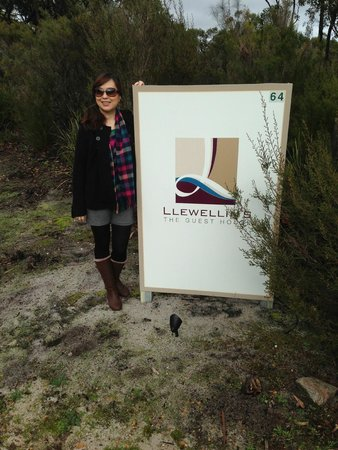 Llewellin's Guest House: Llewellin's