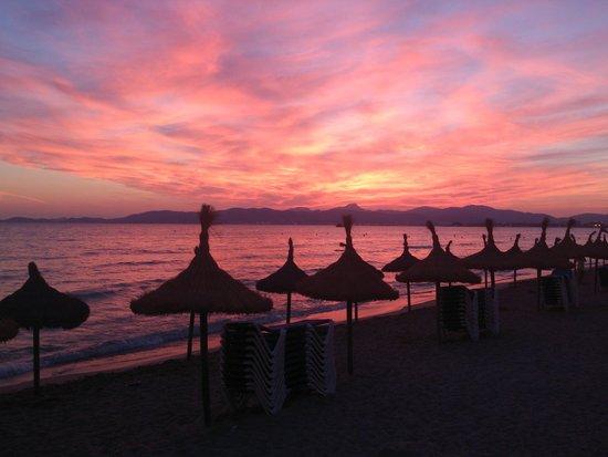 Palma Bay Club Resort : anochecer en El Arenal