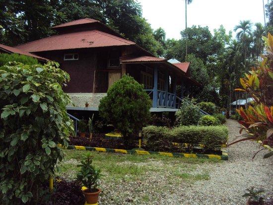 Aranya Jungle Resort: Garden Facing Duluxe Room