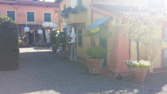 Fattoria Santa Lucia: First view