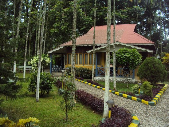 Aranya Jungle Resort: Forest Attached Family Cottage