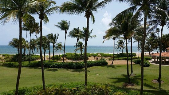 Wyndham Grand Rio Mar Beach Resort & Spa: Suite view