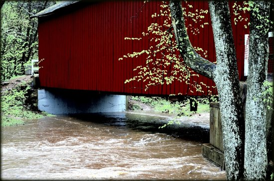 Sandy Creek Covered Bridge State Historic Site: flooded sandy creek covered bridge