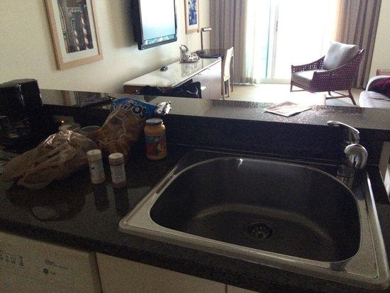 Sonesta Coconut Grove Miami: Sink and countertops