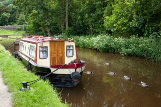 Hawthorns Bed and Breakfast: canal boat with ducks