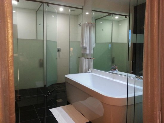 DaVinci Hotel and Suites : Bath and shower