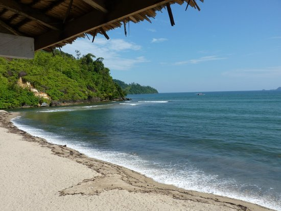 Ricky's Beach House - Authentic Sumatra : vue de la chambre