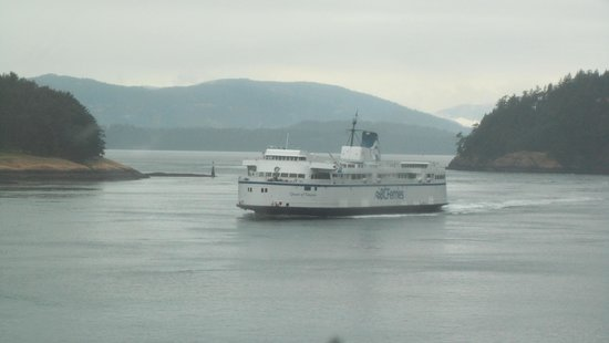 Landsea Tours and Adventures: Ferry to Victoria
