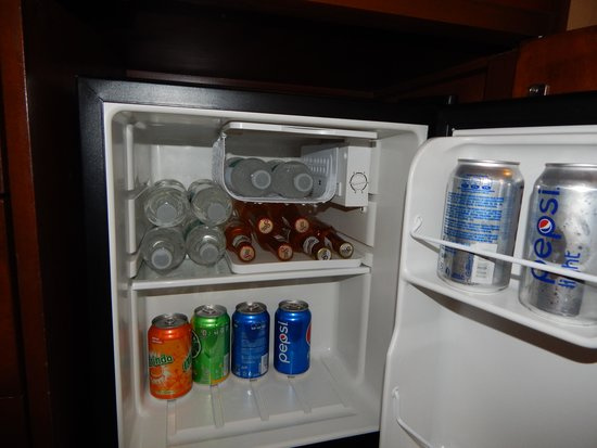 GR Solaris Cancun: Our mini fridge was filled everyday