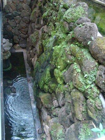 Nishiyama Ryokan : Parete di roccia con cascata