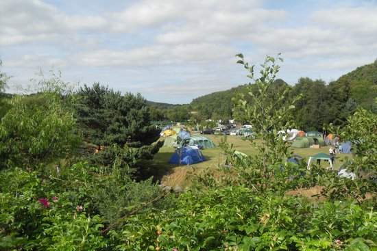 Hidden Valley Holiday Park: View of the camp site from the road