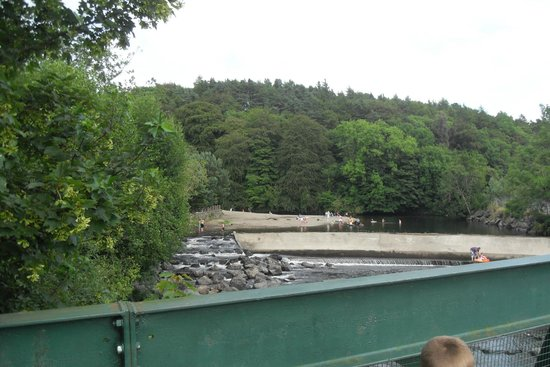 Hidden Valley Holiday Park: River and Swimming area