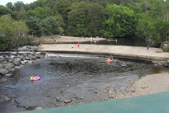 Hidden Valley Holiday Park: Swimming area