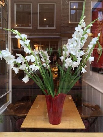 Prego Restaurant : gladioli in Prego's window