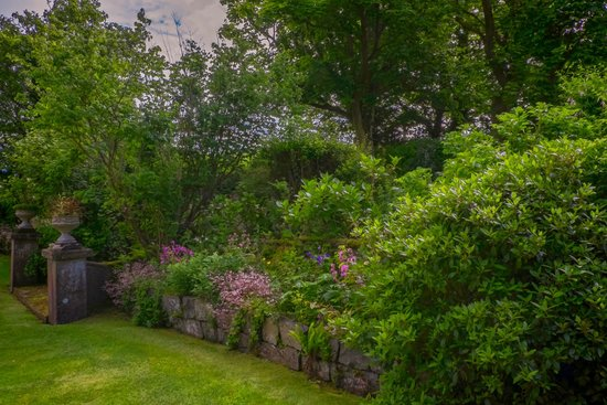 Whitepark House: front garden