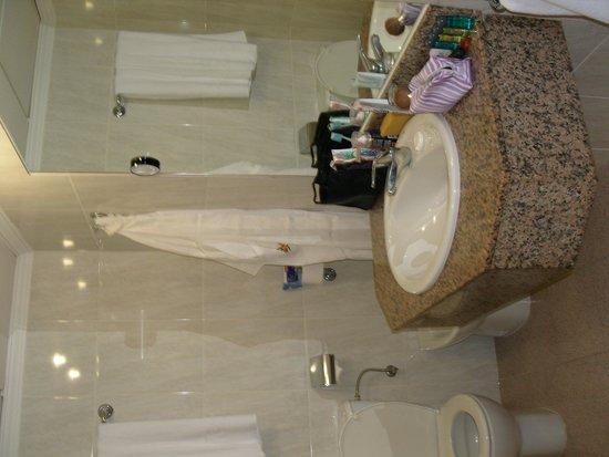Hotel Gran Sol Ibiza: baño  super limpio