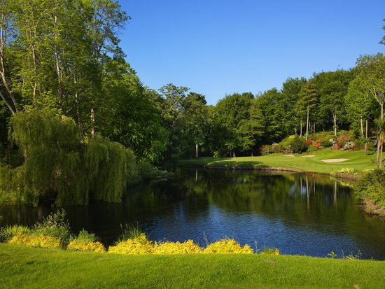 Druids Glen Hotel & Golf Resort: 8th hole on Druids Glen golf course