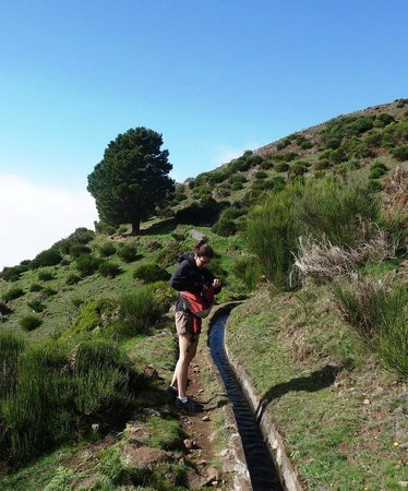 Up Mountain Madeira: A short hike on a levada trail