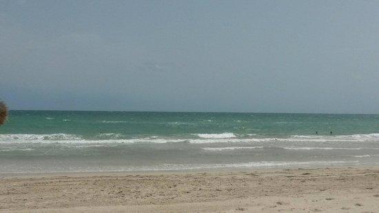 Al Jazira Beach & Spa: Plage