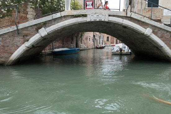 Row Venice: One of the bridges we passed under