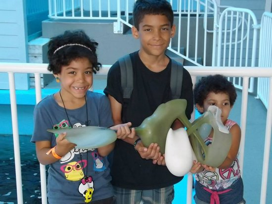 Clearwater Marine Aquarium: Our kids holding one of Winter's old prosthetic tails