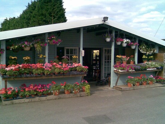 Honeydale Farm Shop and Tea Room: Farm Shop entrance