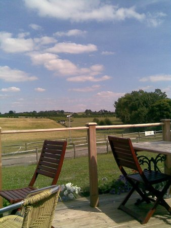 Honeydale Farm Shop and Tea Room: View from the seating area
