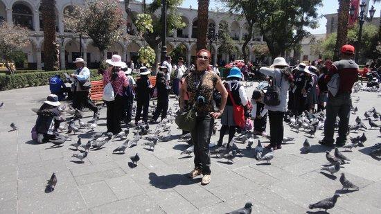 Plaza de Armas: No meio da Plaza que é super movimentada!