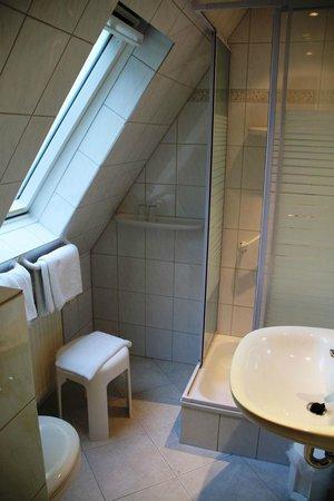 Niebueller Hof: Dusche im Gästehaus