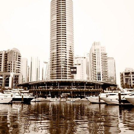 Dubai Marina Yacht Club: view from the water