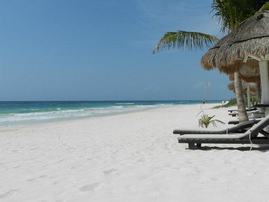 Villa Las Estrellas : beach from hotel