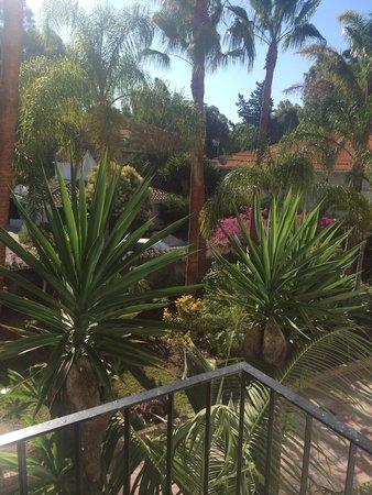 BlueBay Banus: view from my standard hotel room