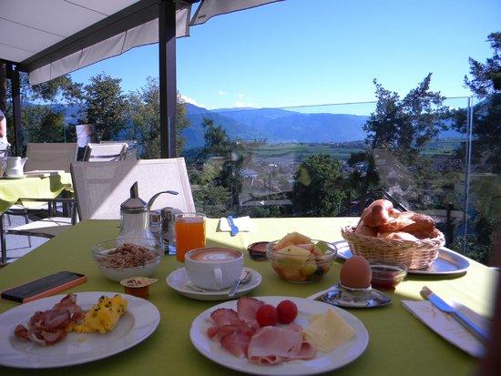 Hotel Lambrechtshof: colazione con vista
