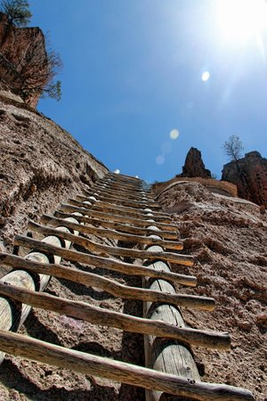 Bandelier National Monument: one of the ladders up to the cave