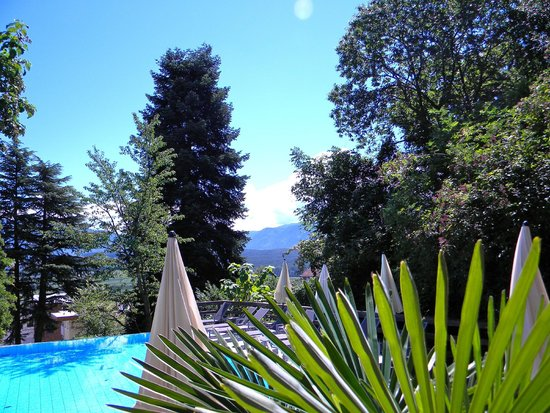 Hotel Lambrechtshof: the pool