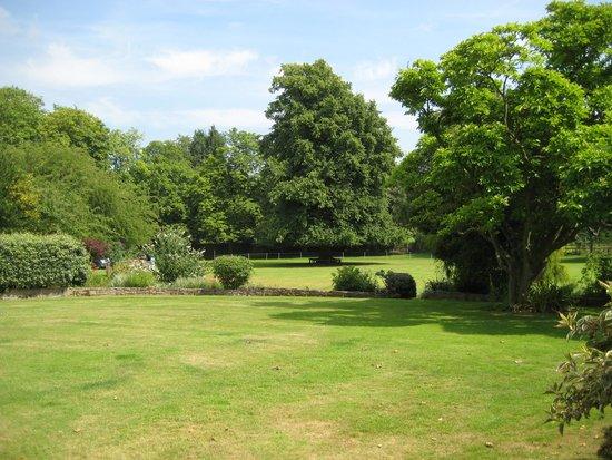 The Munnings Art Museum : Terrace View of Park