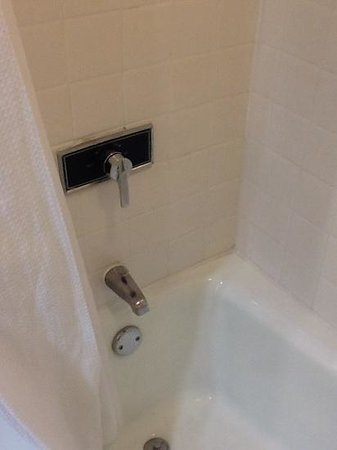 DoubleTree by Hilton Hotel Pittsburgh-Green Tree: shower...needs to be updated!