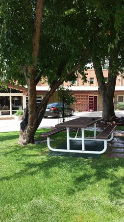 Siesta Motel : Picnic Area in our Courtyard