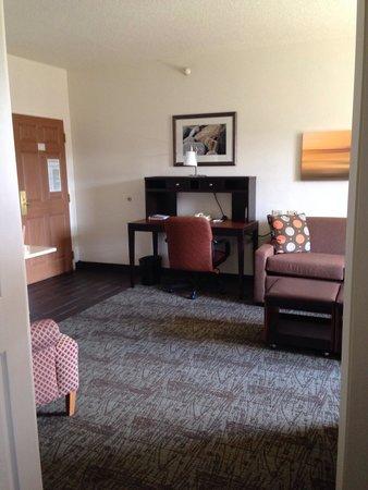 ستايبريدج سويتس شيكاجو - أوكبروك تيراس: View from bedroom into living room 412