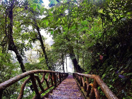 Rio Celeste: Stairs down to waterfall